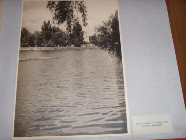 gallery_2123_53_1951437.jpg